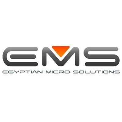 Egyptian Micro Solution